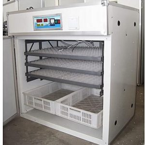 http://ecochickspoultry.com/shop/eggs-incubators/1232-eggs-incubator/