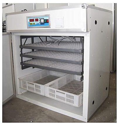 http://ecochickspoultry.com/shop/eggs-incubators/1232-eggs-incubator/