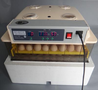 48 eggs incubator
