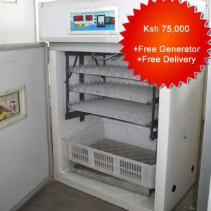 176 egg incubator2
