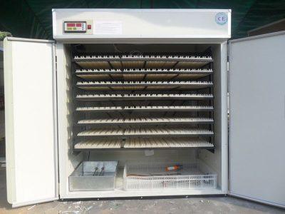 2112 eggs incubator