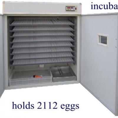 2112 egg incubator price