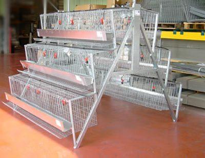 chicken cages in Kenya