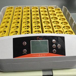56 eggs incubator