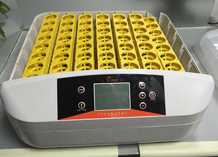 Digital 56 Egg Incubator Hatcher Temperature Control Automatic Turning with  Built-in LED Candler